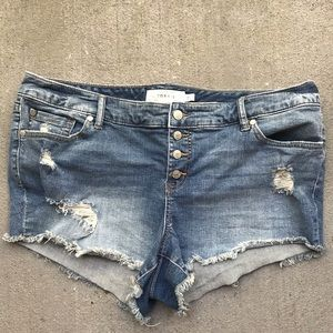 TORRID Distressed Denim Cut off Shorts Button fly
